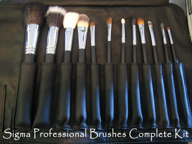 sigma brushes professional complete kit review Review: Sigma Makeup Brushes