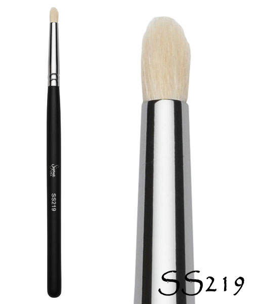 ss219big copy Review: Sigma Makeup Brushes